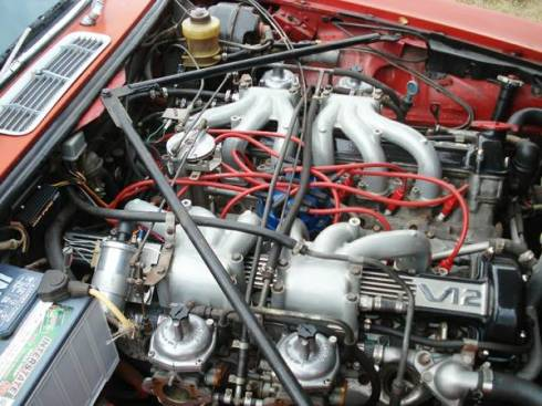 TTS Jaguar